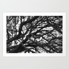 Tangled Up Art Print
