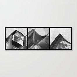 RM/2 Canvas Print