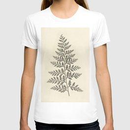 Naturalist Fern T-shirt