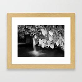 Serenity... Framed Art Print