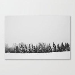 Pine Line Canvas Print