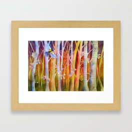 Soaring Through Framed Art Print