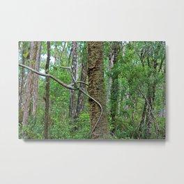Tree Climber Metal Print