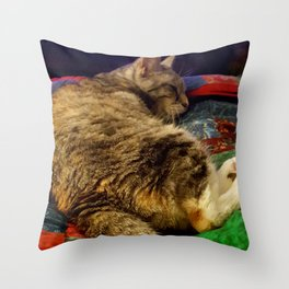 This is the life! Throw Pillow