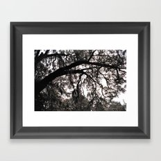 Finger Trees Framed Art Print