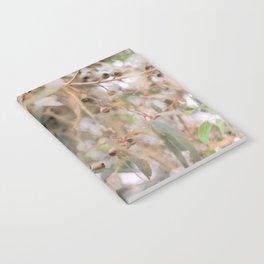 Gumnut Notebook