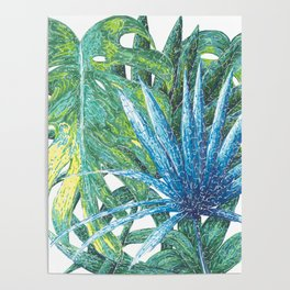 Philodendron & Flora Poster
