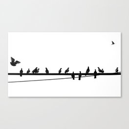 Pigeon on Wire Canvas Print
