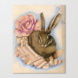 Hare Study Canvas Print