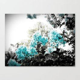 Turquoise & Gray Flowers Canvas Print