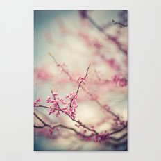 a pink day Canvas Print