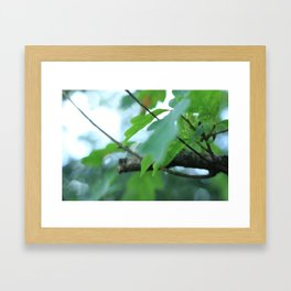 Macro Leaves Framed Art Print