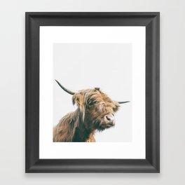 Majestic Highland cow portrait Framed Art Print