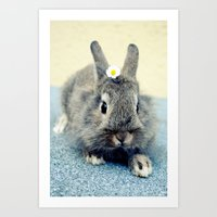 bunny Art Prints featuring Bunny by Falko Follert Art-FF77