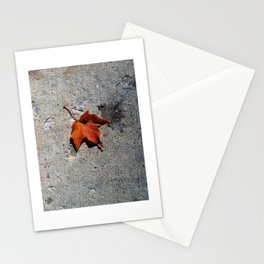 leaf on cement Stationery Cards