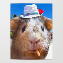 Guinea Pig Face Poster