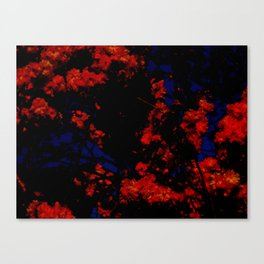 Prague Spring #1 Canvas Print