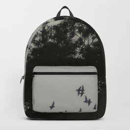Nightfall flight Backpack