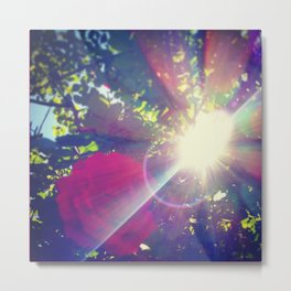 Petals of Light Metal Print
