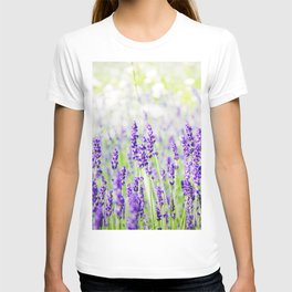 Field of Lavender 01 T-shirt