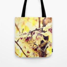 [1] Tote Bag