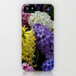Colorful Hyacinth Blossoms Growing Together in a Garden in Amsterdam, Netherlands iPhone Case