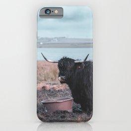 Vintage photography - Highland Cow, Thurso, Scotland iPhone Case