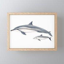 Long-beaked dolphin and baby Framed Mini Art Print