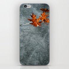 Autumn Leaves on Ice iPhone Skin