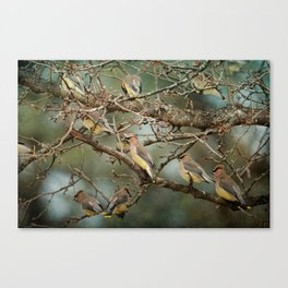 Family Reunion Canvas Print