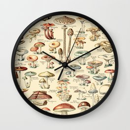 Trippy Vintage Mushroom Chart // Champignons by Adolphe Millot XL 19th Century Science Artwork Wall Clock