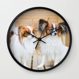 Outdoor portrait of a papillon purebreed dogs Wall Clock