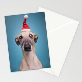 Silly season greetings Stationery Cards