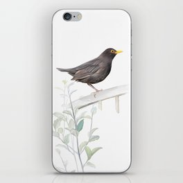 Ms. Blackbird is Brown iPhone Skin