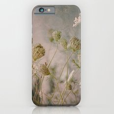 Summer Botanical -- Queen Anne's Lace Still Life iPhone 6s Slim Case