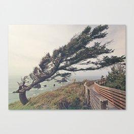 Windshaped Canvas Print