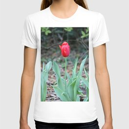 Simple Beauty T-shirt