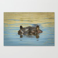 hippo Canvas Prints featuring Hippo by Ark.Us.