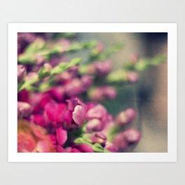 market flowers Art Print