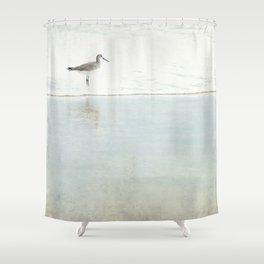 Reflecting Sandpiper Shower Curtain