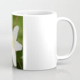 Two White Star-Shaped Flowers Coffee Mug