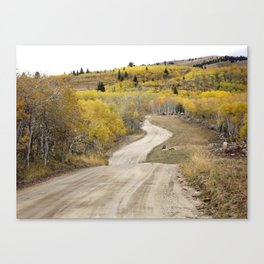 Path of Least Resistance Canvas Print