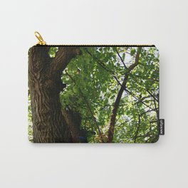 Virginia Forest with Light Shining Through Carry-All Pouch