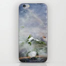 frozen lakes iPhone Skin