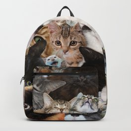 Crazy Kitten Show Backpack