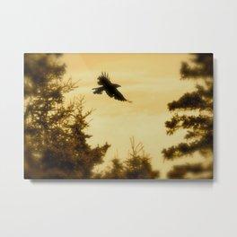 As The Crow Flies Metal Print
