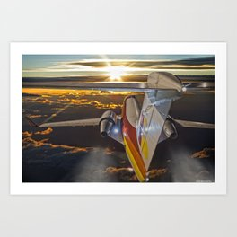 Flying at dawn Art Print