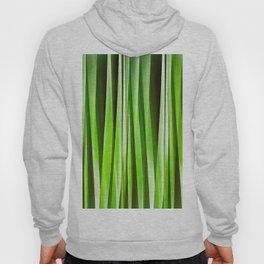 Tropical Green Riverweed Hoody