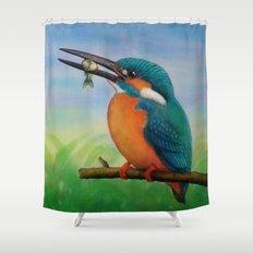 Common Kingfisher Shower Curtain