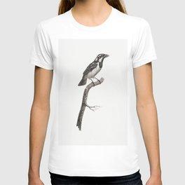 Magpie Bird of Paradise male from Histoire Naturelle des Oiseaux de Paradis et Des Rolliers (1806) b T-shirt